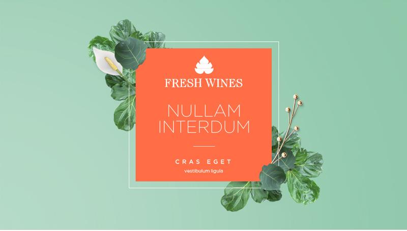 Fresh Wines